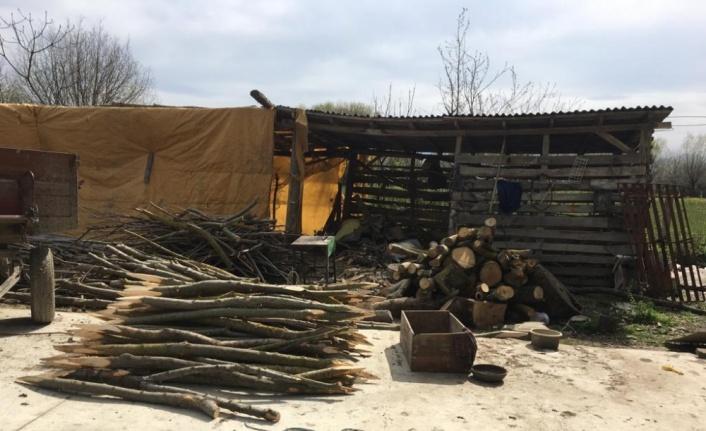 Alaçam'da kaçak orman emvali bulundu