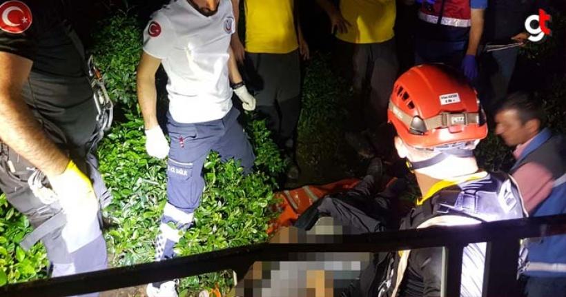 Mevye toplamak için ağaca çıkan kişiyi elektrik çarptı, Muhsin Albayrak olay yerinde öldü