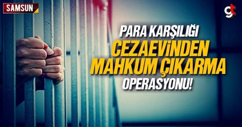 Samsun'da cezaevinden para karşılığı mahkum çıkarma operasyonunda 11 gözaltı