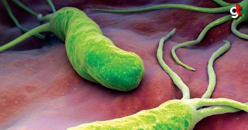 Mideyi istila eden gizli ajan, helikobakter enfeksiyon