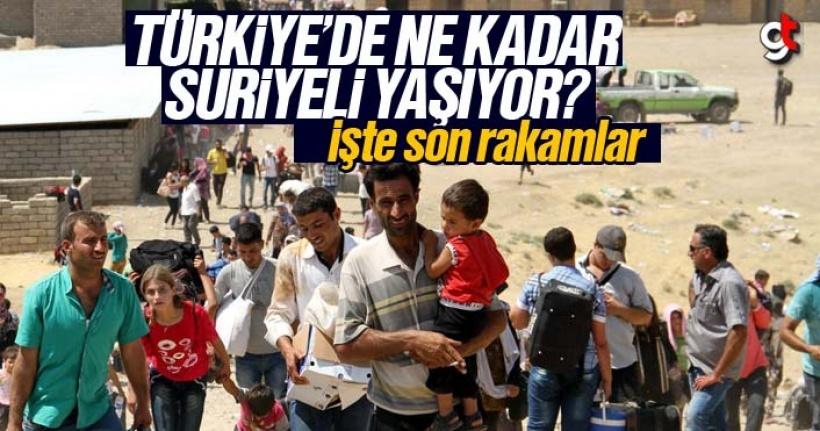 Türkiye'de ne kadar Suriyeli yaşıyor, işte son rakamlar