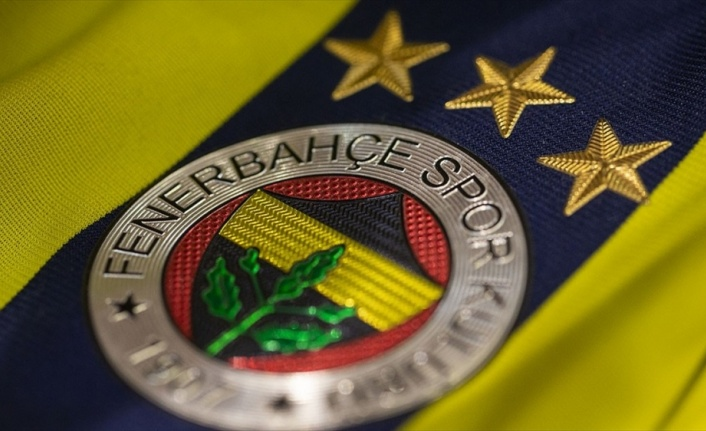 Fenerbahçe Luiz Gustavo'yu transfer etti