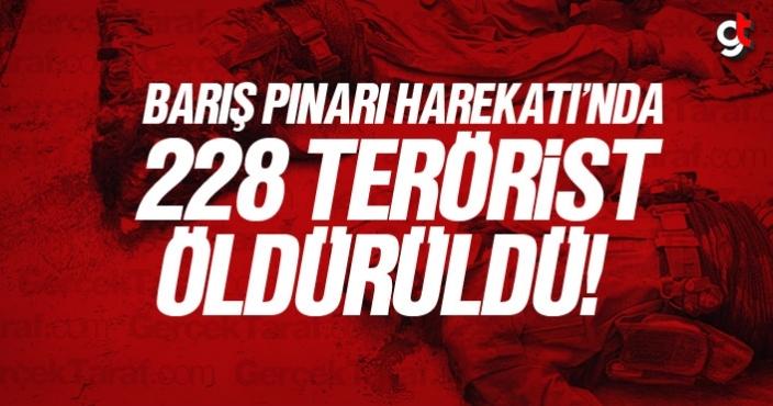 Barış Pınarı Harekatı kapsamında 228 terörist öldürüldü