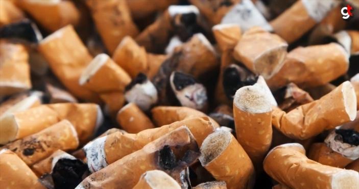 'Sigarayla mücadelede ne yapsak yeridir'