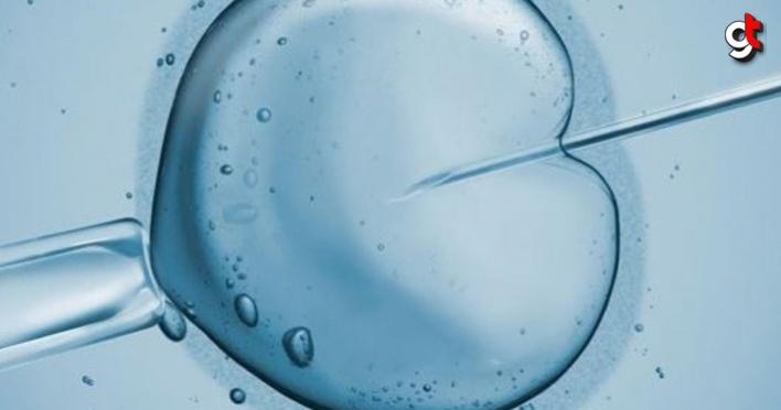 Kıbrıs'ta Bulunan Tüp Bebek Merkezleri Önemini Her Geçen Arttırmakta