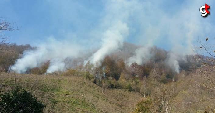 Salıpazarı İlçesi Esatçiftliği Mahallesinde orman yangını