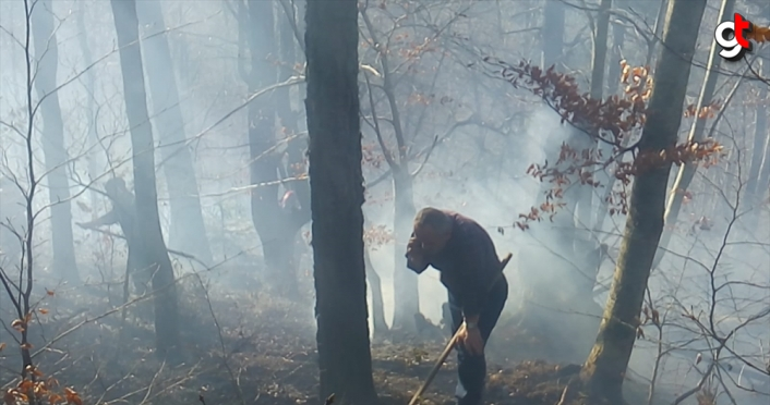 GÜNCELLEME - Düzce'de çıkan orman yangını kontrol altına alındı