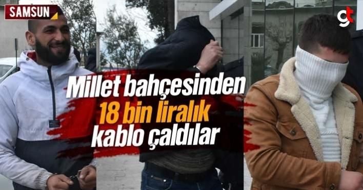 Samsun Millet Bahçesi'nden 18 bin liralık kablo çaldılar