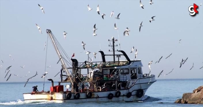 Akçakocalı balıkçılar limana 60 ton hamsiyle döndü