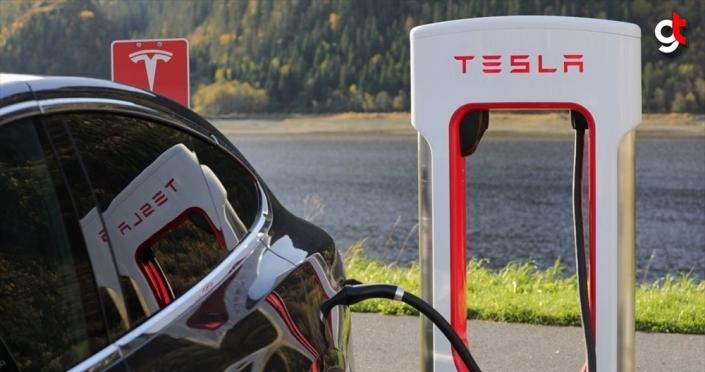 Tesla, Almanya'da kuracağı fabrika için 92 hektarlık ormanı yok edecek