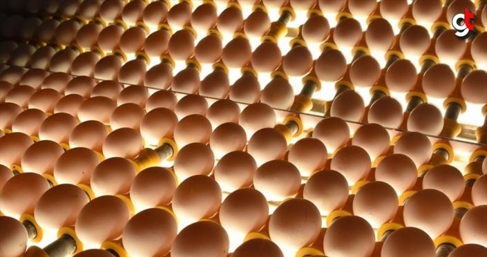 Yumurta üreticilerinden 'stoğa gerek yok' mesajı