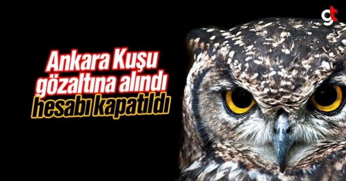 Ankara Kuşu twitter kullanıcısı gözaltına alındı, Ankara Kuşu kim, kim kullanıyor, adı ne?