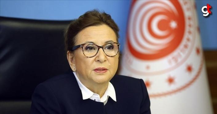 Bakan Pekcan: Ekonomik toparlanma uluslararası iş birliğiyle sağlanacaktır