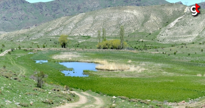 Erzurum'un 'yüzen adaları'na turizm yatırımı
