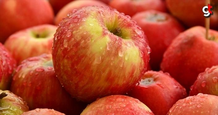 Türk ihracatçısı 210 milyon dolarlık 'Tayland elma pazarı'na giriyor