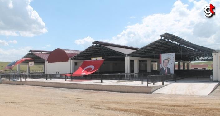 Bayburt'ta canlı hayvan pazarı hizmete açıldı