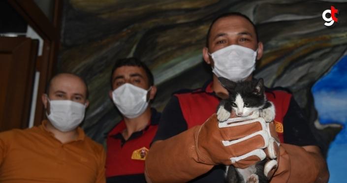 Giresun'da iş yerinin havalandırma boşluğunda sıkışan kedi yavrusu kurtarıldı
