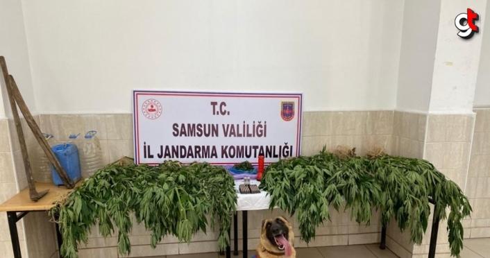 Samsun'da uyuşturucu operasyonlarında yakalanan 2 şüpheli tutuklandı