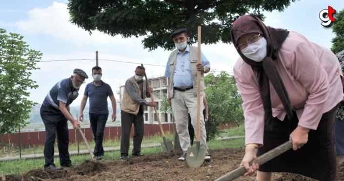 Samsun'da huzurevi sakinleri Kovid-19 stresini hobi bahçesine sebze dikerek attı