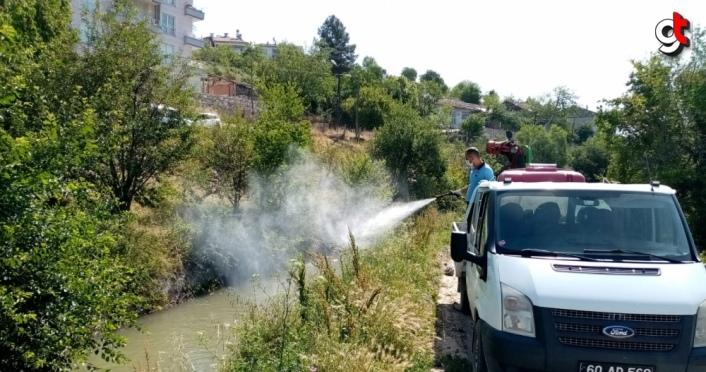Tokat Belediyesi ilaçlama çalışması yaptı