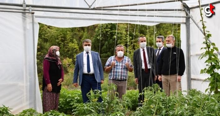 Vali Gürel örtü altı üreticilerini ziyaret etti