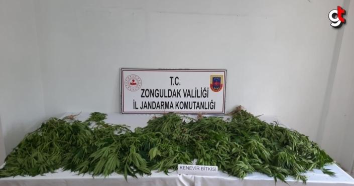 Zonguldak'ta uyuşturucu operasyonunda 1 kişi gözaltına alındı