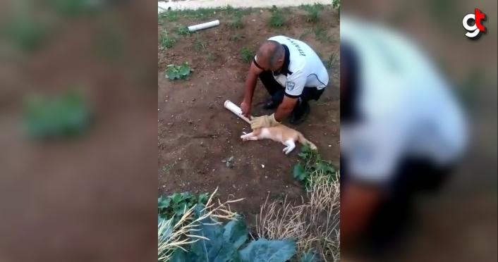 Amasya'da su borusuna sıkışan kediyi itfaiye ekipleri kurtardı
