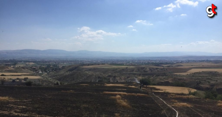 Amasya'daki yangında 25 dönüm ekili alan zarar gördü