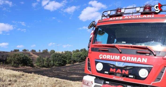 Çorum'da çıkan anız yangınında 20 hektarlık alan zarar gördü
