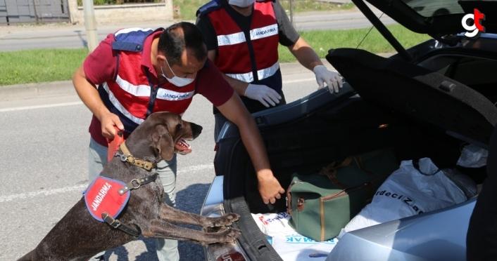 İçişleri Bakan Yardımcısı Çataklı'dan trafik güvenliği açıklaması:
