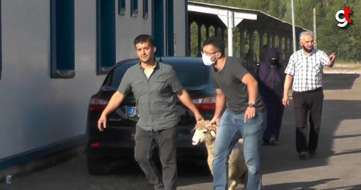 Karabük'te kurban satış ve kesim yerlerinde yoğunluk