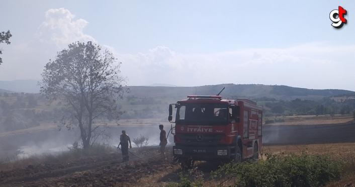 Samsun'da çıkan yangında bin dekar ekili arazi zarar gördü