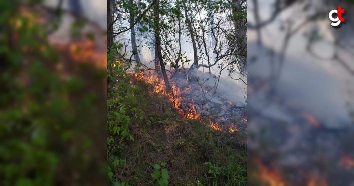 Samsun'da örtü yangınında 3 hektarlık alan zarar gördü