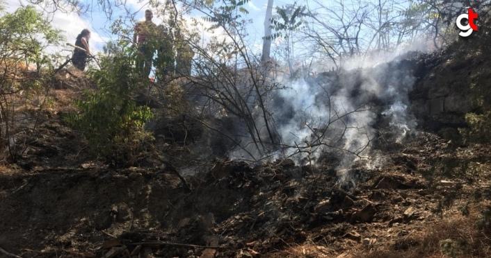 Amasya'da çıkan orman ve örtü yangını söndürüldü