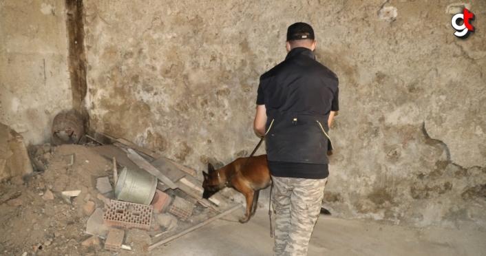 Bolu'da narkotik köpekleri