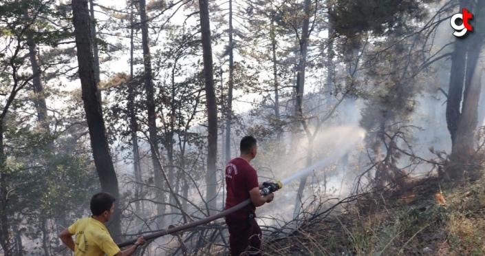 GÜNCELLEME - Zonguldak'ta çıkan orman yangını kısmen kontrol altına alındı