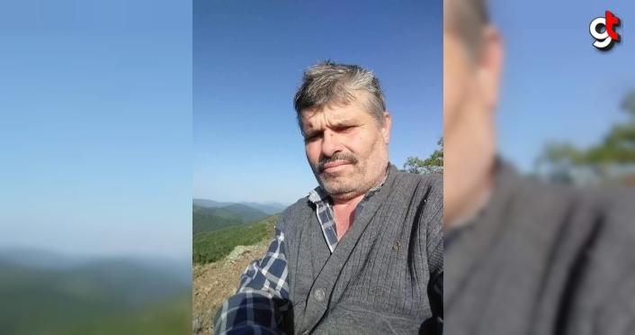 Karabük'te kestiği ağacın altında kalan kişi öldü, kardeşi yaralandı