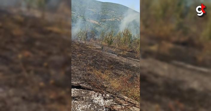 Kastamonu'da çıkan orman yangını söndürüldü