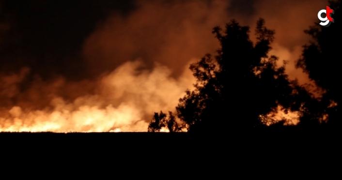 Samsun'da sazlık alanda yangın çıktı