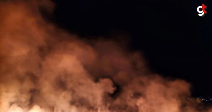 Sinop'ta 4 noktada çıkan örtü yangını söndürüldü