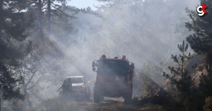 Zonguldak'ta çıkan orman yangınına müdahale ediliyor