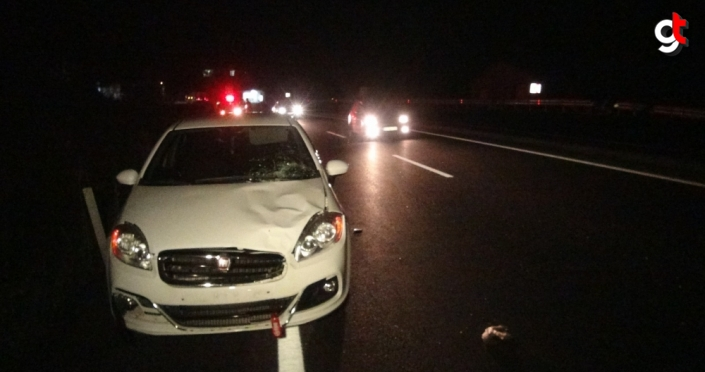 Zonguldak'ta otomobilin çarptığı yaya öldü