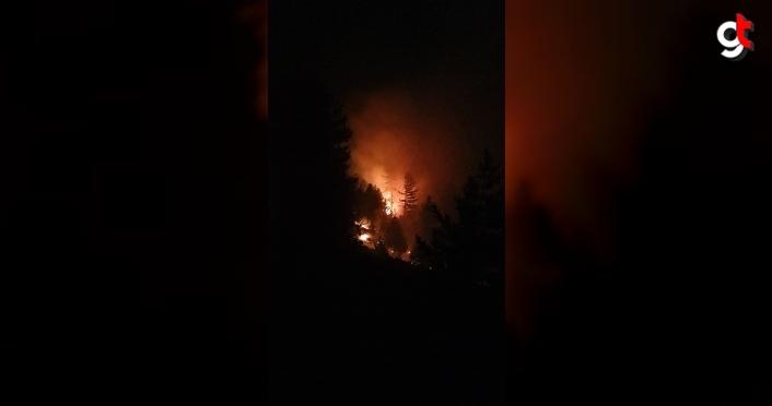 Bolu'nun Aladağ Yaylası'nda orman yangını çıktı