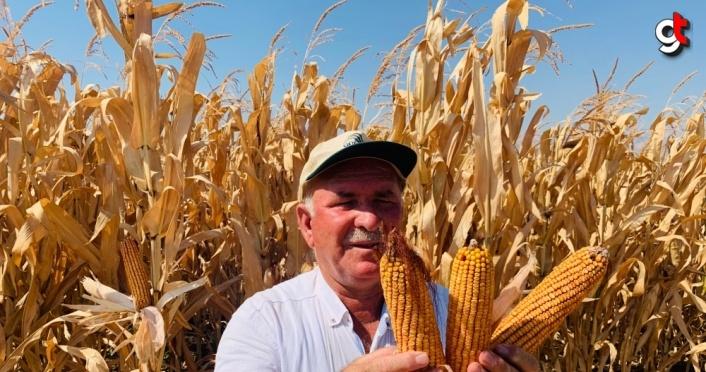 GÜBRETAŞ'la tarımda yüksek verim