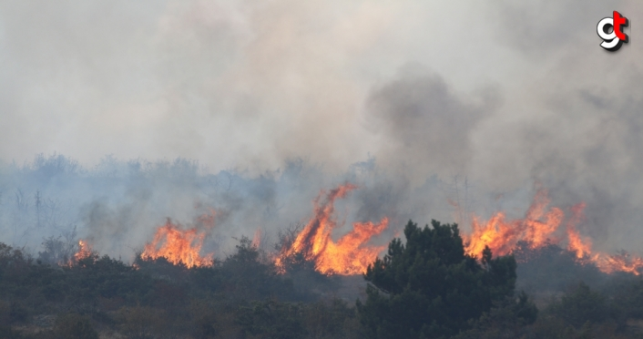 GÜNCELLEME - Bolu'da çıkan orman yangınına müdahale ediliyor