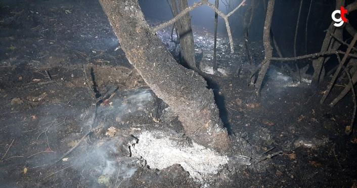 GÜNCELLEME - Karabük'te orman yangını
