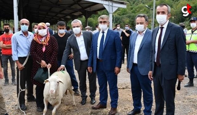 Karabük'te üreticilere damızlık koç dağıtıldı