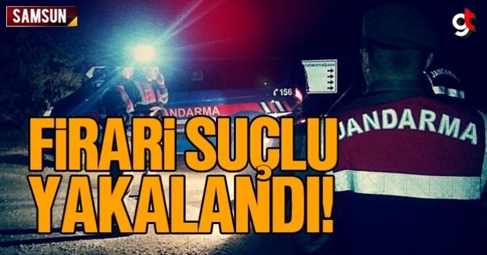 Samsun'da firari suçlu yakalandı