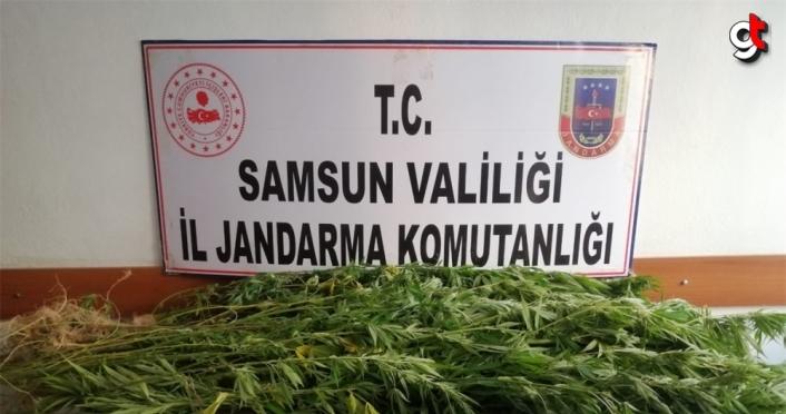 Samsun'da uyuşturucu operasyonlarında 14 şüpheli yakalandı