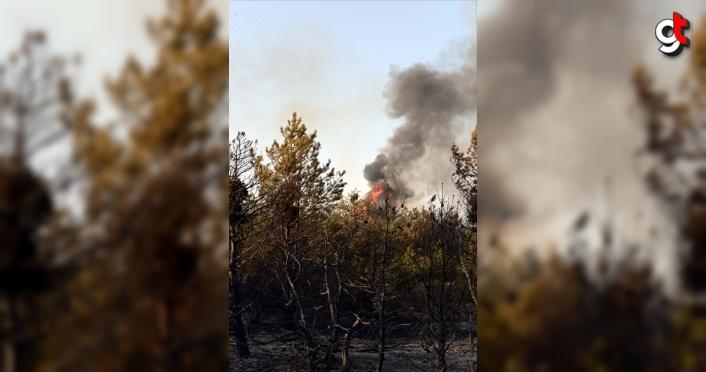 Tokat'ta çıkan orman yangını kontrol altına alındı
